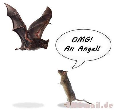 safe OMG! An Angel!