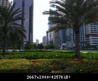 Abu Dhabi 84