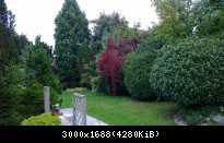 WP 20130930 18 32 45 Pro