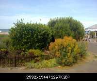 Landschaftsbild Broadstairs 42