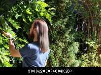 Offenes Haar / Loose Hair 15